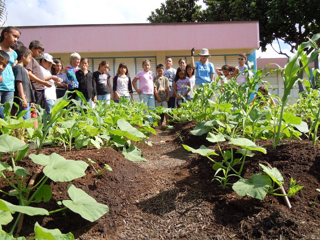 class in the garden at edible Hawaiian Islands
